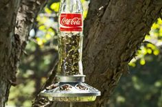 Learn how to make a homemade bird feeder using a glass soda bottle and a chicken feeder base. This sturdy feeder holds lots of seed and will last for years.