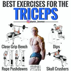 Increase your triceps in size with these exercises and the ultimate bulking stack that increases protein synthesis and nitrogen retention as well as speeds up recovery so that you can train harder. Best Gym Workout, Biceps Workout, Workout Humor, Cardio Gym, Shoulder Workout, Bodybuilding Workouts, Gym Training, Gain Muscle, Yoga
