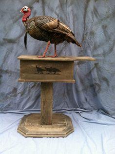 Box call pedestal. Taxidermy Decor, Taxidermy Display, Bird Taxidermy, Wood Duck Mounts, Deer Mounts, Deer Hunting Decor, Deer Decor, Turkey Fan, Wild Turkey