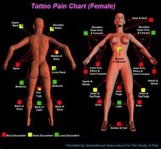 Tattoo Pain Chart (Female)