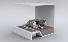 Modern Pet Products Cat Bed