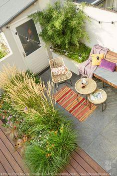 Home 21, Edison Lighting, Small Garden Design, Garden Photos, Portfolio, Small Gardens, Beautiful Gardens, House Plants, Outdoor Living