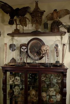 Mantels full of skulls black and white creepy skulls halloween halloween pictures halloween images halloween ideas Curiosity Cabinet, Goth Home Decor, Cabinet Of Curiosities, Gothic Horror, Gothic House, Victorian Gothic Decor, My New Room, Vanitas, Occult