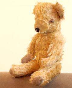 Antique RARE English Teddy Bear Color Eyes Mohair Unique Great Cond   eBay
