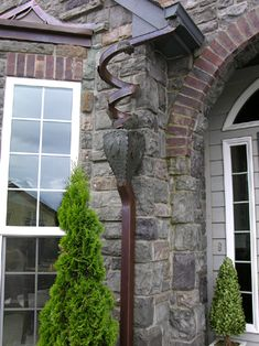 Grapevine downspout - how beautiful is that!
