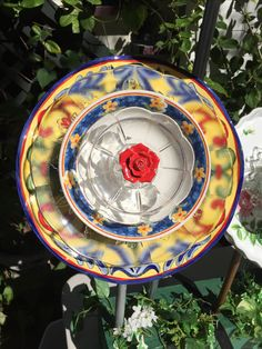 Another view of the very colorful flower. MiMi's Plate Flowers