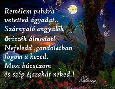 Good Night, Good Morning, Humor, Nighty Night, Good Day, Buen Dia, Cheer, Bonjour, Have A Good Night