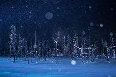 Snow pond - winter bluepond