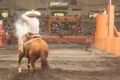 Silver stallion siendo montado cowgirl 6