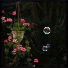 @zevloun poslední dobou není moc na focení času... #bubbles