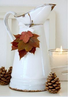 Fall Pitcher