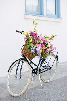Bike rides to the market for fresh flowers.