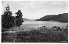 Storsjøen i Rendal 1930-tallet . Foto: Normann