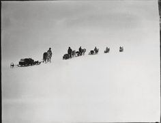 The ponies straggle in the icy wilderness on a trek from which many of the men and none of the ponies would not return.