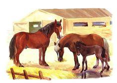 Логопед. Тольятти. Дефектолог. Дети. Farm Animals, Kitty, Horses, School, Little Kitty, Kitty Cats, Kitten, Horse, Cats