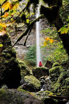 Elowah Falls Hike in Oregon // http://localadventurer.com