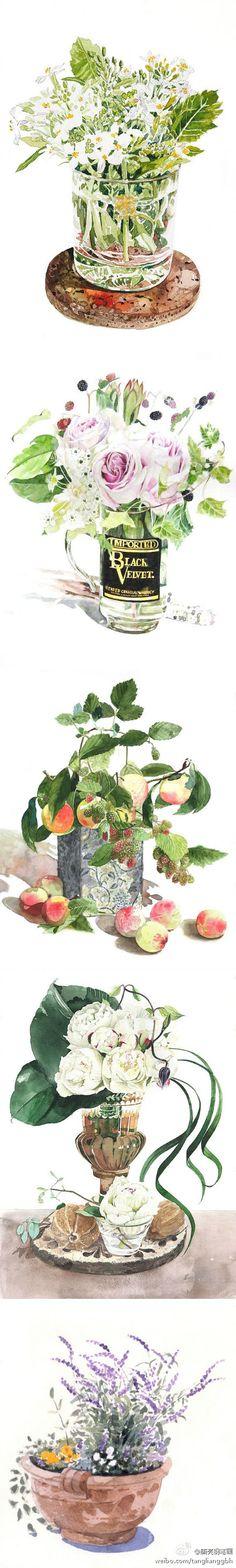 trasparencias agua y flores,watercolor国外Ayako Tsuge水彩 作品