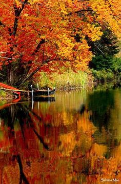 ✯ A Perfect Autumn Day