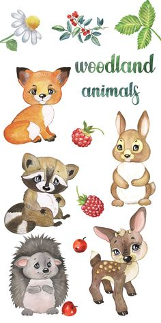 This Woodland Animals Watercolor Clipart Set will be great for baby shower and birthday invitations, scrapbooking, DIY, wall art and more! Safari Animals, Forest Animals, Woodland Animals, Cute Baby Animals, Happy Animals, Baby Animal Drawings, Watercolor Animals, Watercolor Cat, Baby Drawing