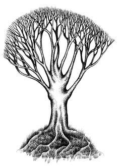 Resultados de la Búsqueda de imágenes de Google de http://www.inkandpen.co.uk/drawings/tree%2520with%2520roots.jpg