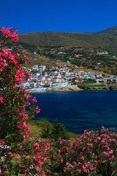 Pink flowers in Andros island, Cyclades, Greece Mykonos, Santorini, Wonderful Places, Beautiful Places, Amazing Places, Places To Travel, Places To See, Andros Greece, Places Around The World