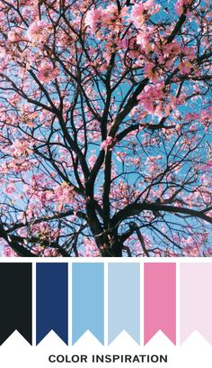 Signs of spring color scheme