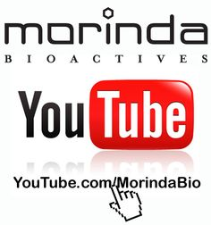 All of the great Morinda videos you love are on our new Morinda YouTube channel.