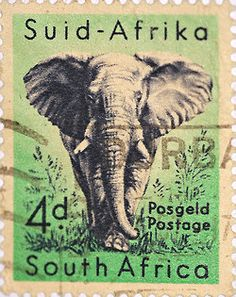 stock photo : SOUTH AFRICA-CIRCA A stamp printed in the South Africa, depicts animals from Kruger National Park, the African Elephant, circa 1954 Old Posters, Posters Vintage, Travel Posters, Elephant Love, Elephant Art, African Elephant, Vintage Elephant, Art Postal, Postage Stamp Art