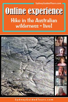 Join me on an hour long hike through Sydney's hidden and stunning natural environment - from the comfort of your home! We'll look for mysterious carvings and find majestic, sculptured cliffs hidden in the national park. There are no people where we are going, just plants and animals in a beautiful and dramatic landscape.  This experience is 100% online. All you have to do is get your computer ready, have proper internet connection, and enjoy your tour in a comfy setting. Travel Planner, Sydney Australia, Tour Guide, Mysterious, Wilderness, Connection, National Parks, Environment, Hiking