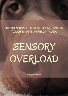 Hypersensitivity To Sensory Stimuli In Fibromyalgia - Hypersensitivity is a condition in which there is an exaggerated immune response to external stimuli such as odors, sounds, lights and chemicals.