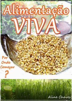 Como germinar sementes no ar? Aprenda no Blog das Panelas de Capim... e transforme sua cozinha em uma horta!