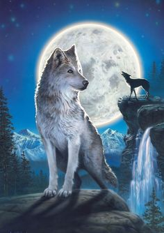 A wolf always hears it's friend's call.... Are you a wolf?