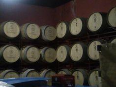 Barricas para la crianza del vino en el interior de Bodegas Señorío de Valdesneros. Torquemada. Palencia. Arlanza.
