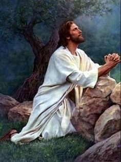 What is the Atonement of Jesus Christ? God and Jesus Christ Jesus Meme, Images Bible, Image Jesus, Jesus Christus, Words Of Jesus, God Jesus, Jesus Pictures, Meme Pictures, Meme Pics
