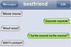Hilarious Text