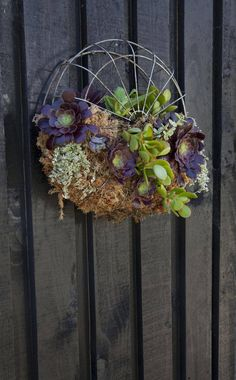 Recycled old fan cover w greenery Diy Planters, Garden Planters, Succulents Garden, Succulent Ideas, Ikebana, Horticulture, Old Fan, Upcycled Crafts, Repurposed
