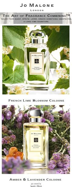 Jo Malone Perfumes - Combine French Lime Blossom with Amber & Lavender