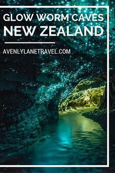 The Waitomo Glowworm Caves are a must see on any trip to New Zealand. 3 hours from Auckland...