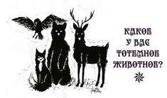 Какое животное — ваш тотем в царстве духов?
