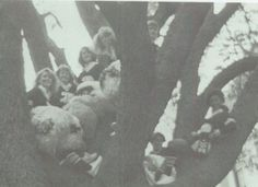 1987 Cheerleaders in a tree in the yearbook of Topeka High School in Topeka, Kansas. #Topeka #Kansas #yearbook #1987