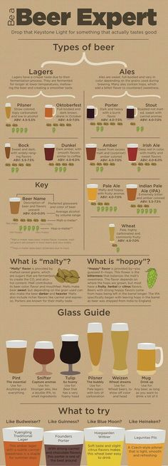Infographic provides guidance for non-craft beer drinkers Beer Guide, types of beer, become a beer expert. Ever stand in the liquor store wondering what new beer to try yet thinking whether you will like it? All Beer, Wine And Beer, Beer 101, All About Beer, Good Beer, What Is Beer, Sake Wine, Beer Types, Beer Glass Types