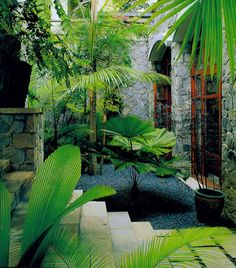 1000 Images About Zen Tropical Gardens On Pinterest