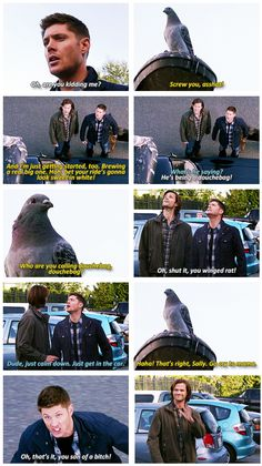 """9x05 Dog Dean Afternoon [gifset] - """"You winged rat!"""" - Dean, Sam and the pigeon. I love Sam waving at all the passersby."""