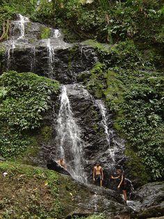 Brownsberg, Surinam