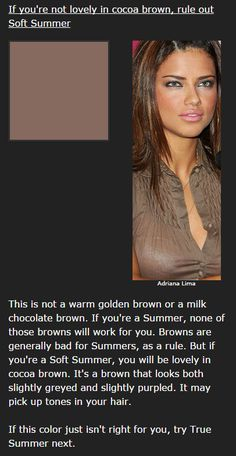 Soft Summer's Cocoa Brown