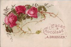 chromo cacao driessen - spray of red roses Decoupage Vintage, Vintage Ephemera, Vintage Cards, Vintage Postcards, Vintage Images, Vintage Rosen, Christmas Swags, Flower Clipart, Antique Roses