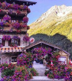 #fiori #flowers #svizzera #switzerland
