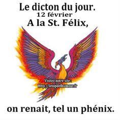 Le dicton du jour.St. Félix