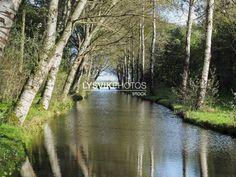 Sloot met bomen in Alblasserbos [01111715] - Beeldbank van de Alblasserwaard