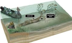 Bass Fishing Tips: 3 Timber Sweet Spots for Largemouths   Outdoor Life